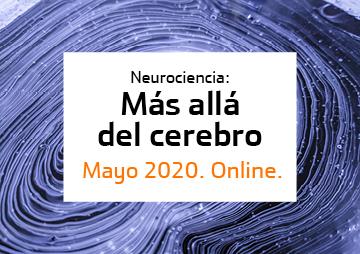 Neurociencia: más allá del cerebro [6-26 mayo]